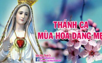 Dâng Hoa Năm Sắc | 50 Bài Hát Thánh Ca Dâng Mẹ Maria Hay Nhất 2018